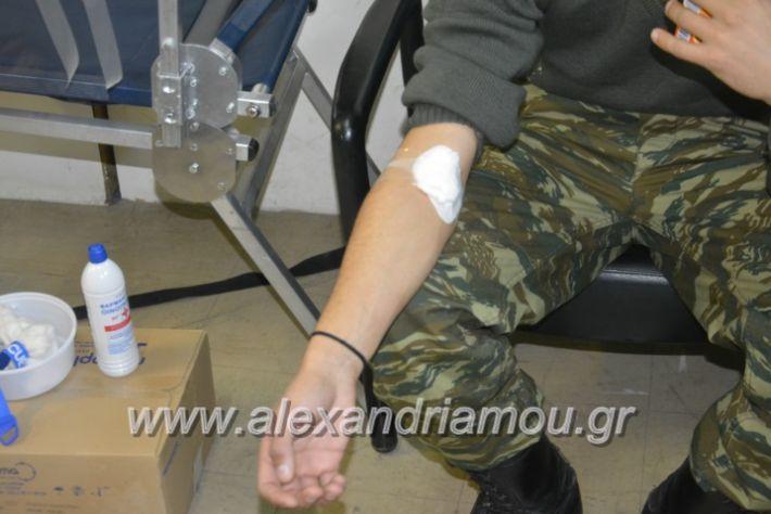 alexandriamou.gr_aimodosia5.12009
