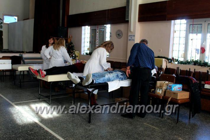 alexandriamou.gr_aimodosia2019nisiIMG_0397