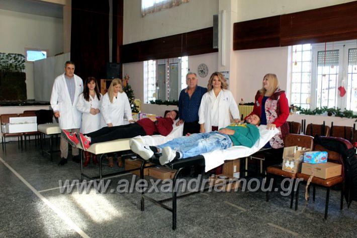 alexandriamou.gr_aimodosia2019nisiIMG_0398
