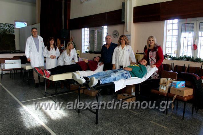 alexandriamou.gr_aimodosia2019nisiIMG_0399