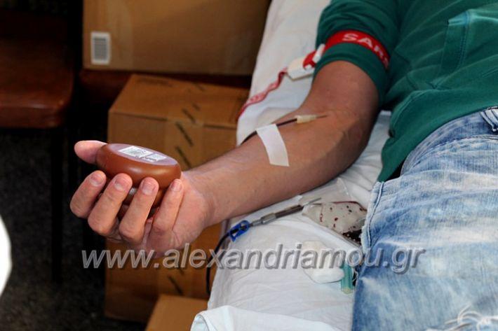 alexandriamou.gr_aimodosia2019nisiIMG_0404