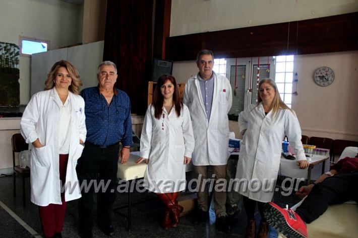 alexandriamou.gr_aimodosia2019nisiIMG_0405