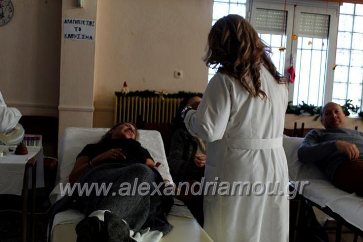 alexandriamou.gr_aimodosia2019nisiIMG_0454