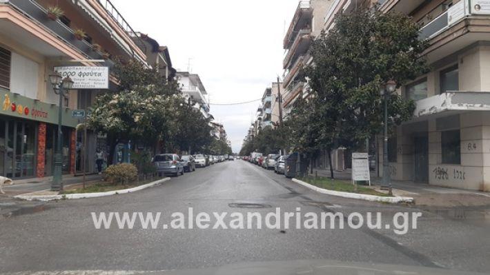 www.alexandriamou.gr_kor120200325_112156