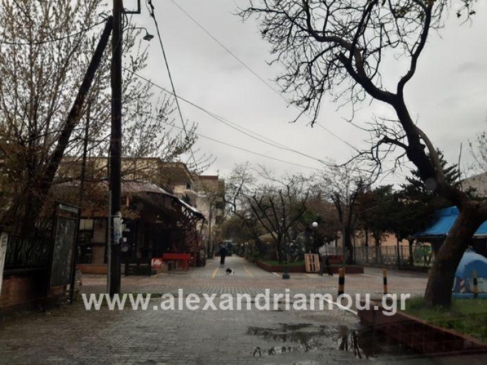 www.alexandriamou.gr_kor1320200325_112828