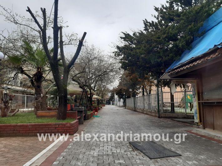 www.alexandriamou.gr_kor1320200325_112849