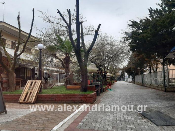 www.alexandriamou.gr_kor1320200325_112851