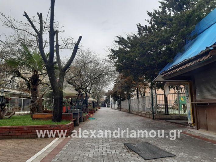 www.alexandriamou.gr_kor1320200325_112854