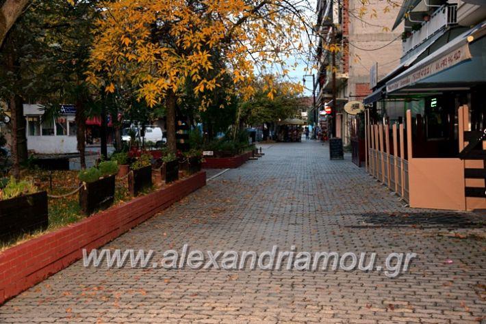 alexandriamou.gr_alexandria03.10.20DSC_0586