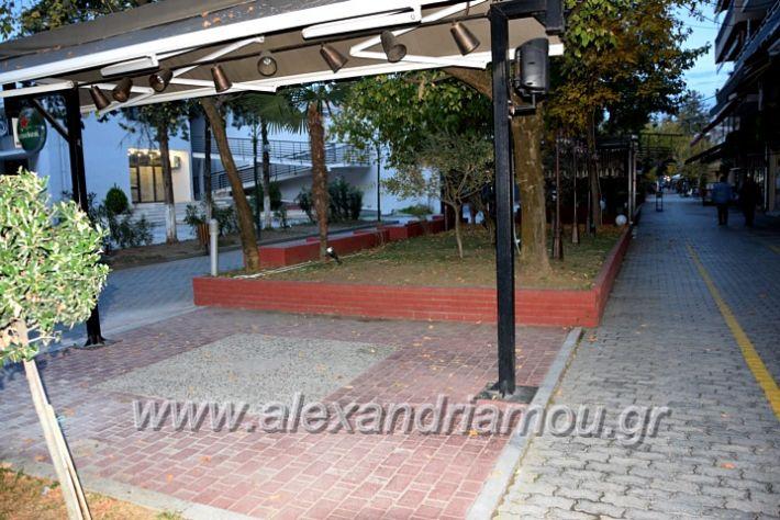 alexandriamou.gr_alexandria03.10.20DSC_0589