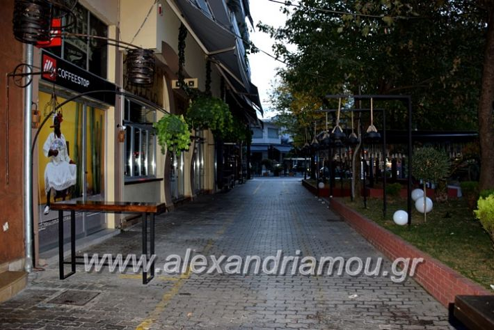alexandriamou.gr_alexandria03.10.20DSC_0611