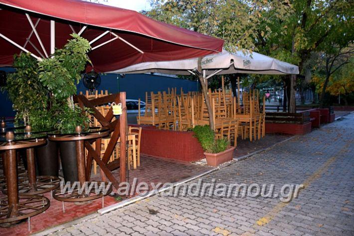 alexandriamou.gr_alexandria03.10.20DSC_0612