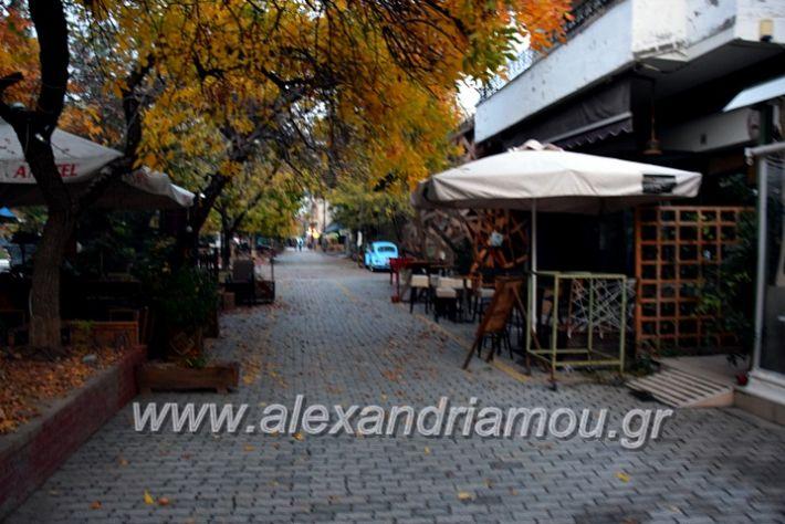 alexandriamou.gr_alexandria03.10.20DSC_0616