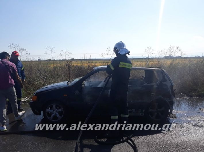 alexandriamou.gr_amaksifotia000