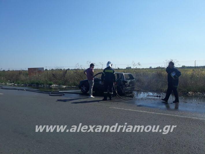 alexandriamou.gr_amaksifotia004