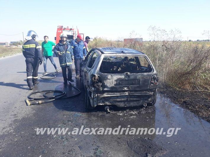alexandriamou.gr_amaksifotia005