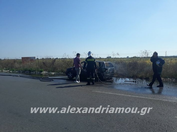 alexandriamou.gr_amaksifotia007