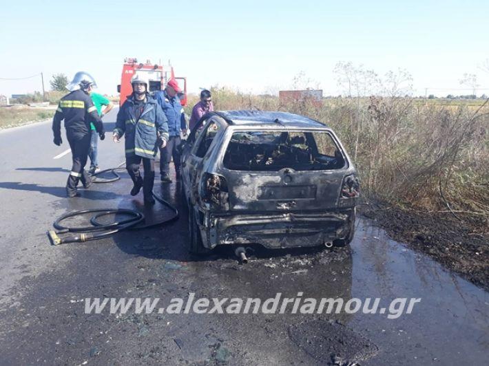 alexandriamou.gr_amaksifotia009