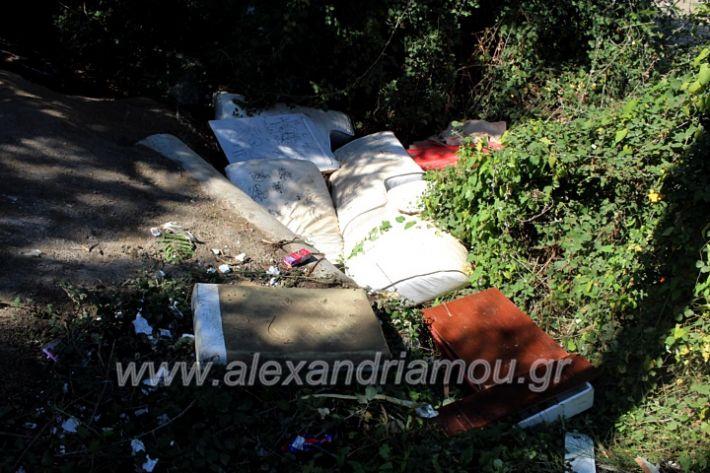alexandriamou.gr_skoupidiaamfitheatroIMG_9918