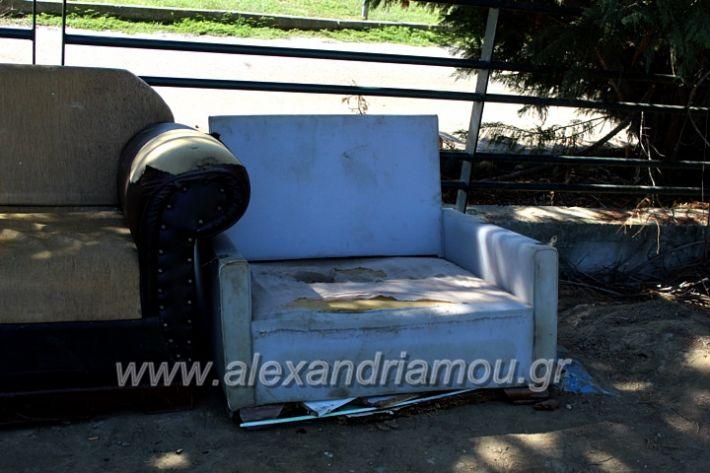 alexandriamou.gr_skoupidiaamfitheatroIMG_9931