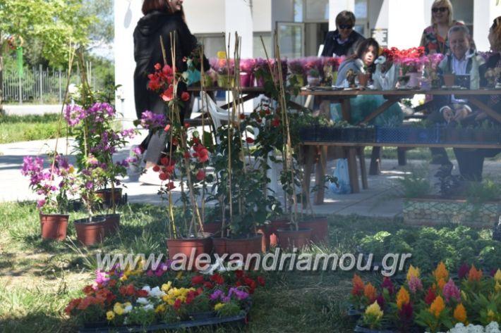 alexandriamou_paidiaanoiksisanthoekhsi2019005
