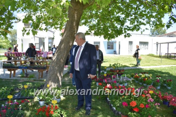 alexandriamou_paidiaanoiksisanthoekhsi2019048