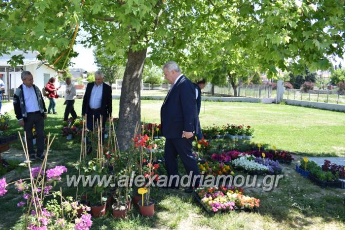 alexandriamou_paidiaanoiksisanthoekhsi2019051