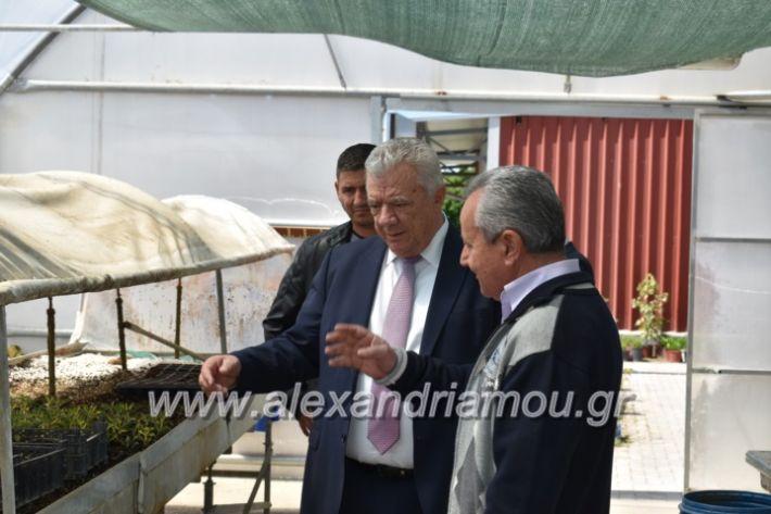 alexandriamou_paidiaanoiksisanthoekhsi2019080