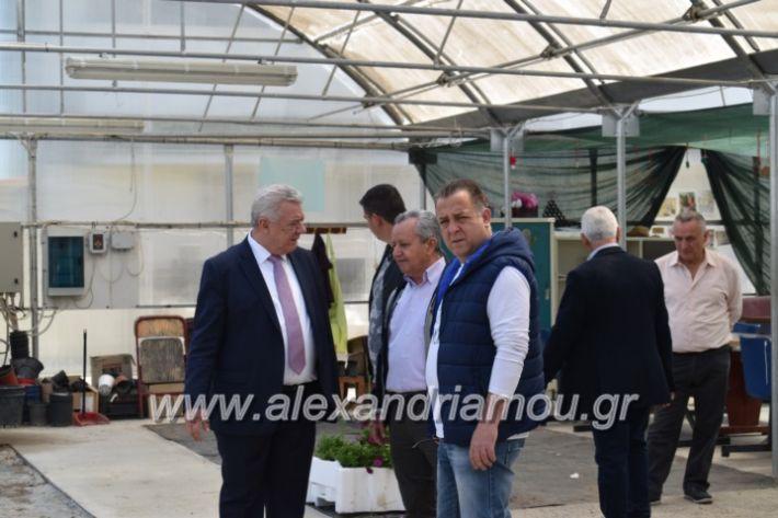 alexandriamou_paidiaanoiksisanthoekhsi2019082