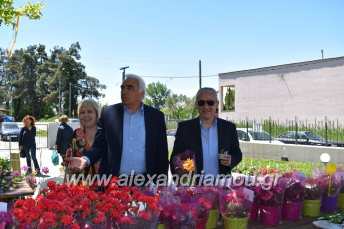 alexandriamou_paidiaanoiksisanthoekhsi2019096