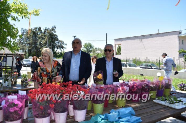 alexandriamou_paidiaanoiksisanthoekhsi2019097