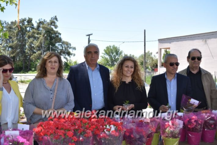 alexandriamou_paidiaanoiksisanthoekhsi2019099