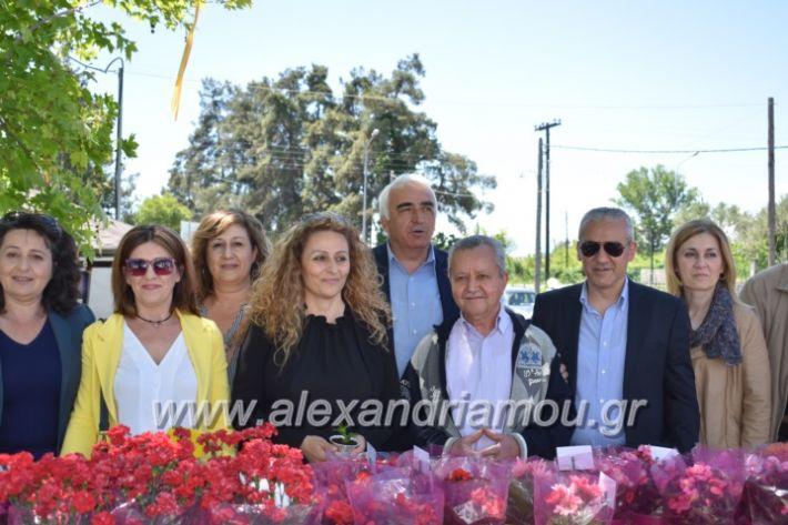 alexandriamou_paidiaanoiksisanthoekhsi2019102