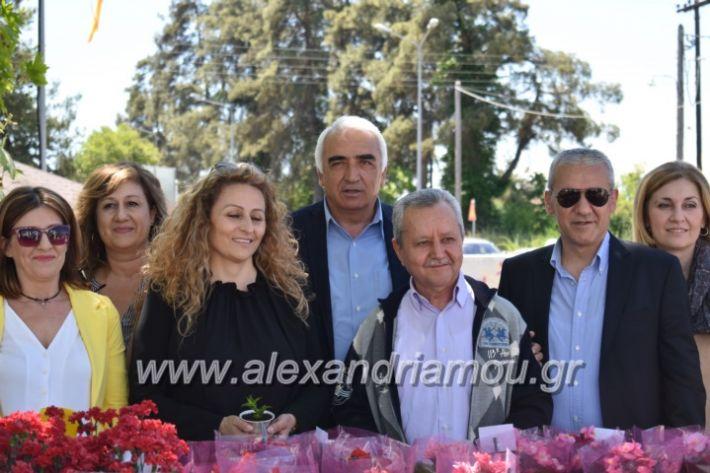 alexandriamou_paidiaanoiksisanthoekhsi2019105