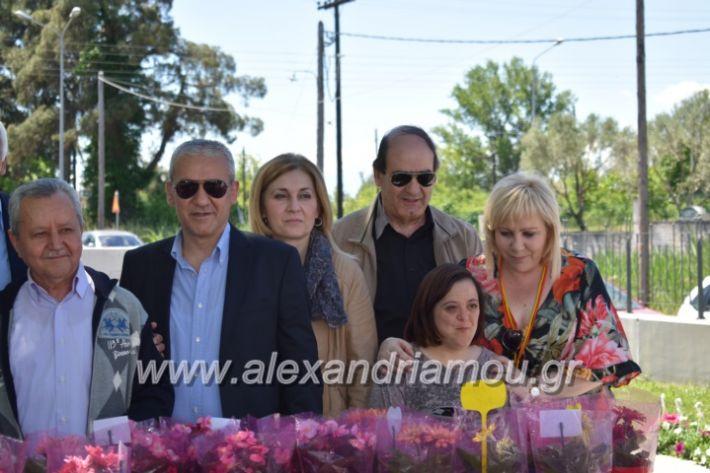 alexandriamou_paidiaanoiksisanthoekhsi2019106