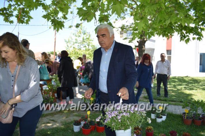 alexandriamou_paidiaanoiksisanthoekhsi2019114