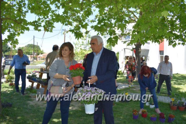 alexandriamou_paidiaanoiksisanthoekhsi2019115