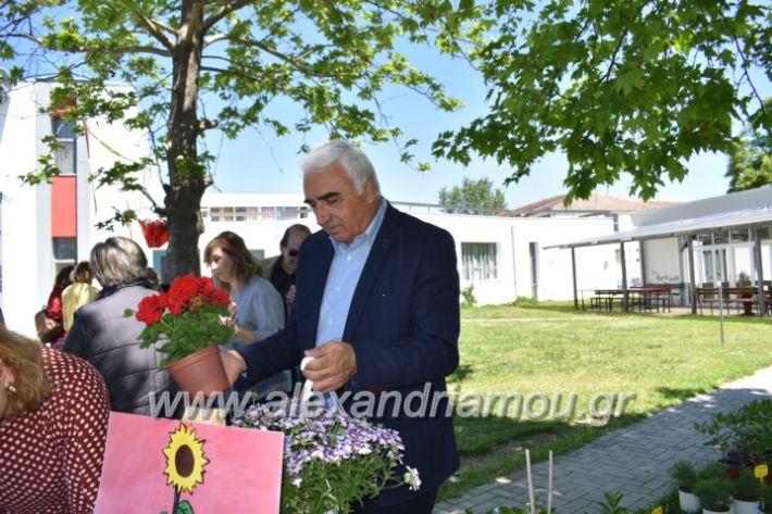 alexandriamou_paidiaanoiksisanthoekhsi2019118