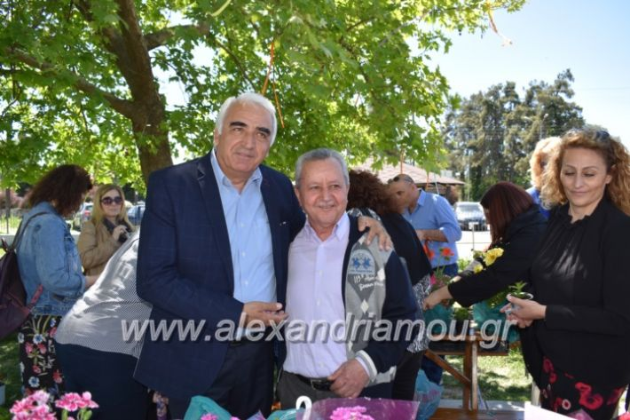 alexandriamou_paidiaanoiksisanthoekhsi2019131