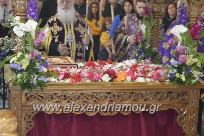alexandriamou_apokathilosialex2019006