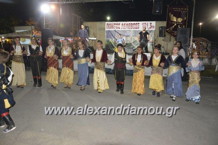 alexandriamou.gr_araxiotika2018026