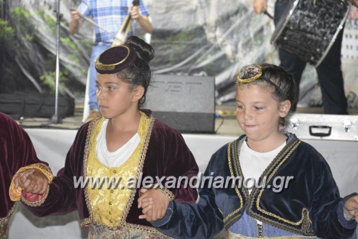 alexandriamou.gr_araxiotika2018035