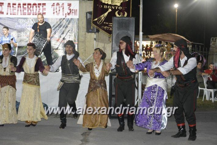 alexandriamou.gr_araxiotika2018108