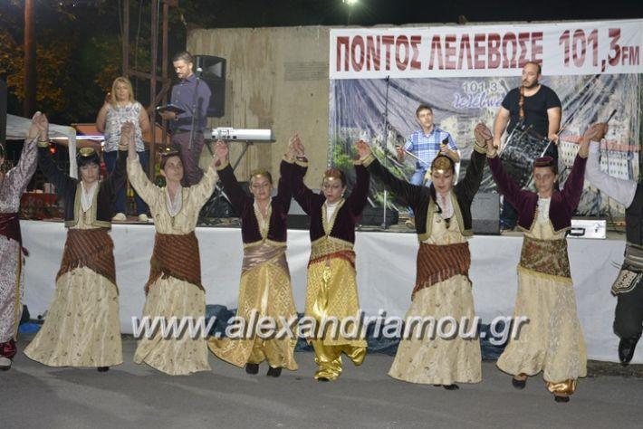 alexandriamou.gr_araxiotika2018109