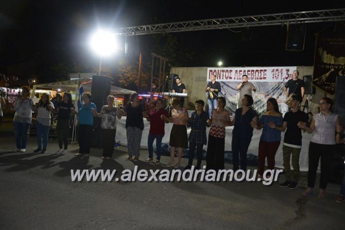 alexandriamou.gr_araxiotika2018206