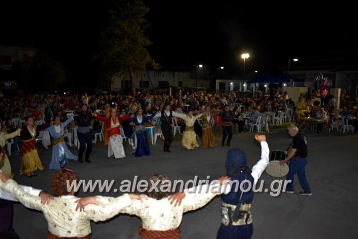 alexandriamou_araxiotika8.6.2019127