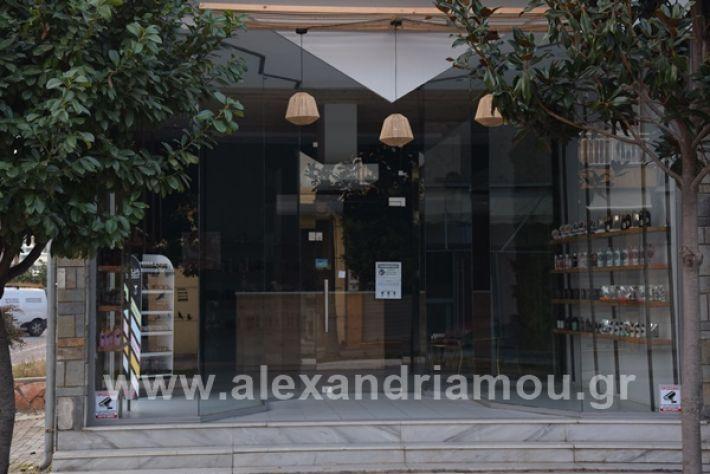 www.alexandriamou.gr_aromapolis21DSC_0056
