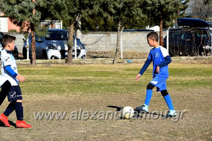 alexandriamou.gr_astera202011DSC_0098