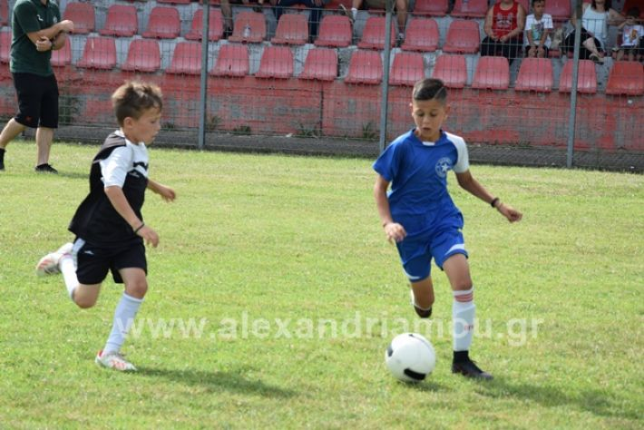 alexandriamou.gr_asterastournouaDSC_0378