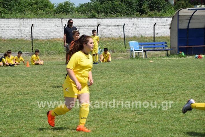 alexandriamou.gr_asterastournouaDSC_0439